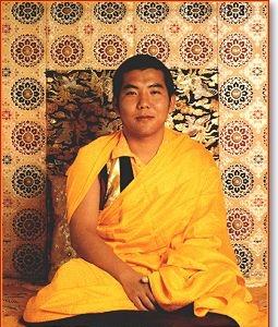 III Jamgon Kongtrul Rinpoche